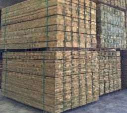 Treated Pine Palings - 1800mm x 100mm x 12mm